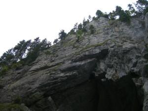 cetati 3